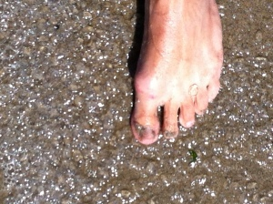 jellyfoot