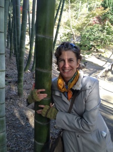 bamboojoy