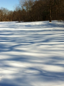 Shadows painting the snow.